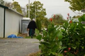 120 Amish vrouw (An) klein